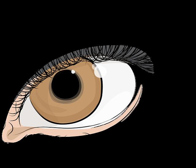 hnědé oko